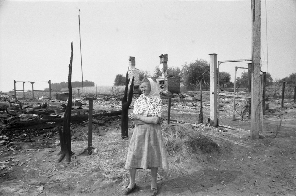 Общий вид на деревню Сельцы, пострадавшей во время летних пожаров
