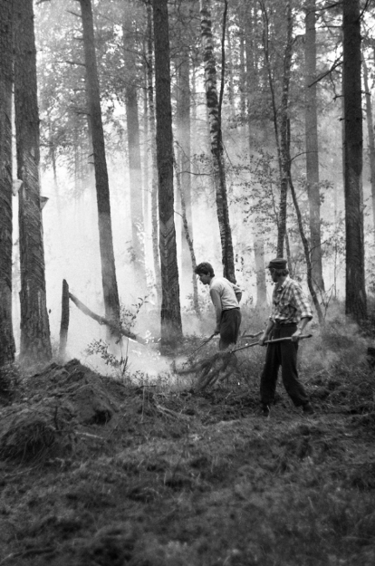 Во время тушения пожара в Любчинском лесничестве Лунинецкого района